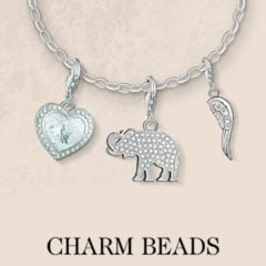 Isn't it Charming! The Top 50 Thomas Sabo Charms