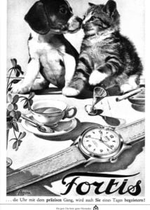Fortis cat and dog poster