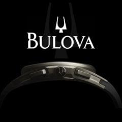 Bulova Infographic