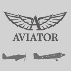 Aviator Infographic
