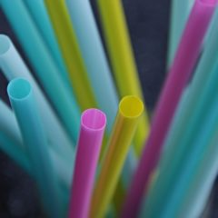 The Ban on Plastic Straws and Ear Buds