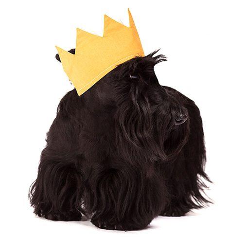 Radley Scottie Dog