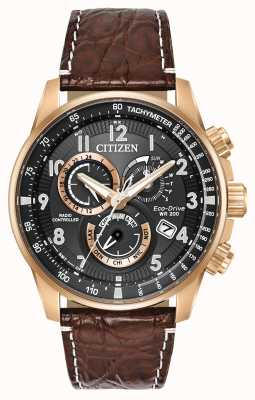 Citizen Limited Edition Radio Controlled Perpetual Calendar AT4133-09E