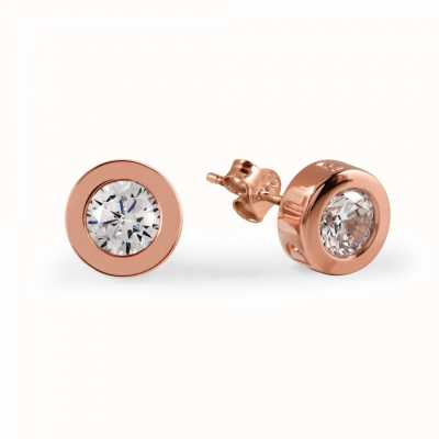 Radley Jewellery Fountain Road Silver Rose Gold Plated Stone Stud Earrings RYJ1000