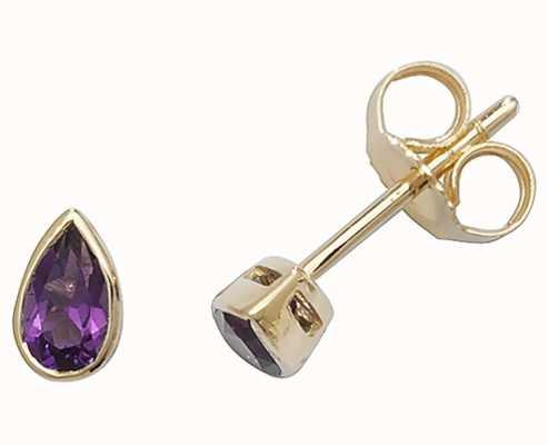 Treasure House 9k Yellow Gold Amethyst Teardrop Earrings ED243A