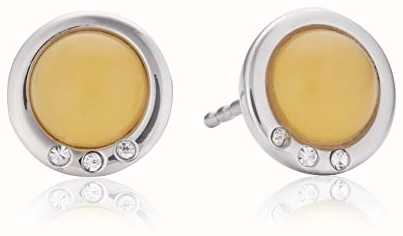 Skagen Ladies Sea Glass Stainless Steel Earrings SKJ0104040
