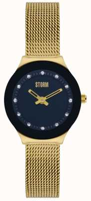 STORM | Arin Gold Black Stainless Steel Watch | 47425/GD