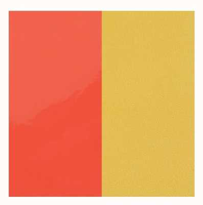 Les Georgettes 25mm Leather Insert | Neon Orange/Canary Yellow 702755199CY000