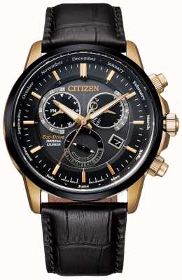Citizen Calibre 8700 Perpetual Calendar Watch | Dark Brown Leather BL8156-12E