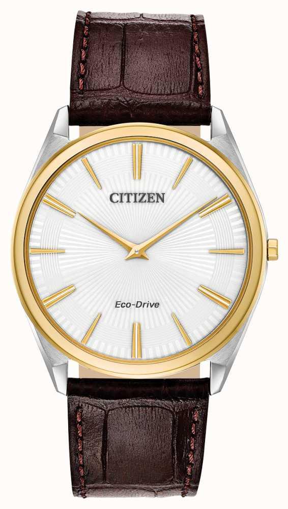 Citizen AR3074-03A